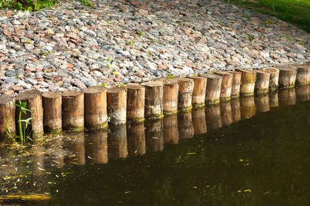 Strengthening the shore of the reservoir with wooden piles made of Larch
