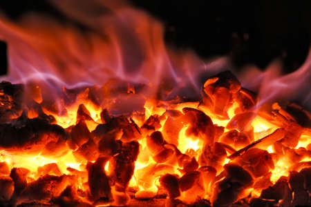 intensely: Charcoal in the flames of fire