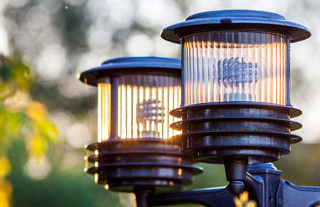 electric material: Two streetlights with energy-saving lamps in the garden