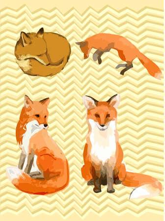 cunning: Vector lindo zorro. Vectores