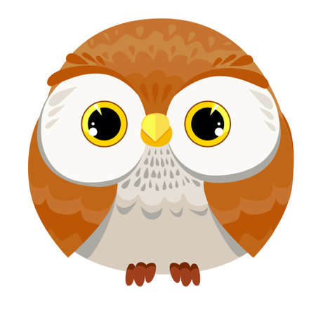 Owl Vector Illustration
