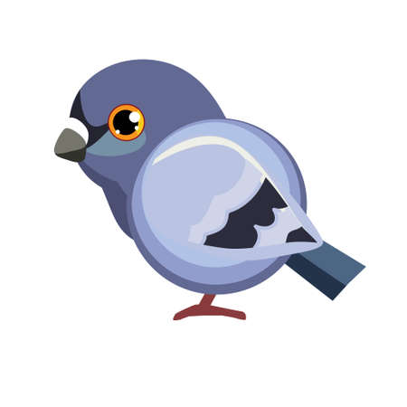 Cute cartoon Dove set Vector Illustration Birds