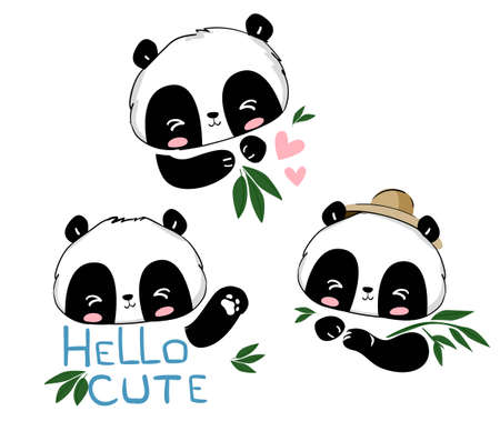 Set of sketch pandas and bamboo isolated on white background. Different poses bear panda vector print. Design elements for poster, poster, background, t-shirts, advertising.