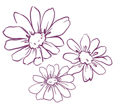 Set hand drawn flowers, chamomile vector illustration, chamomile with stem and leaves.