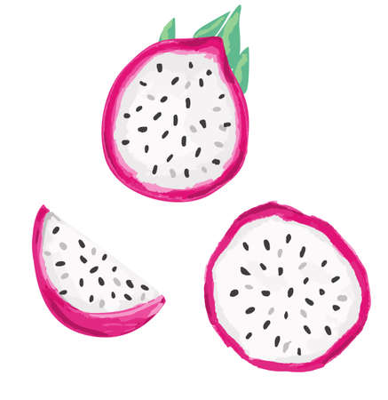 Hand drawn Pitaya Fruit . Dragon Fruit set isolated on a white background.