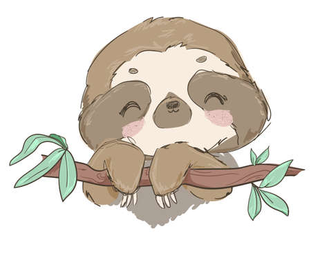 Hand drawn cute animal sloth on the tree vector