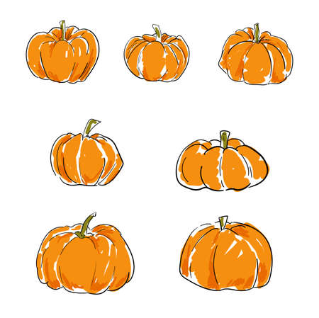 Sketch pumpkin isolated on white background drawing vector