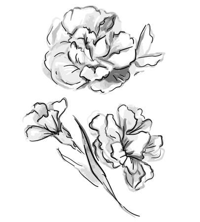 Hand Drawn Flowers vector illustration beautiful floral graphic nature