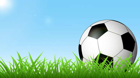 Soccer ball on the green grass against the blue sky and the sun