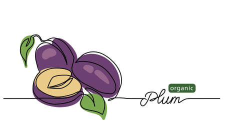 Plum vector illustration. One line drawing art illustration with lettering organic plum. 向量圖像