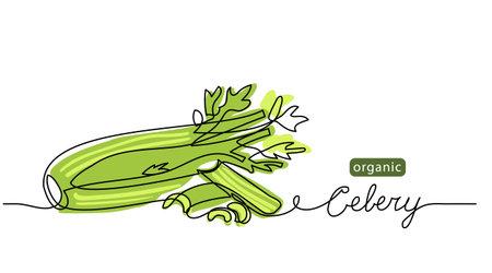 Celery sticks, stalks, green leaf vector sketch illustration for background, label design. One line drawing art illustration with lettering organic celery