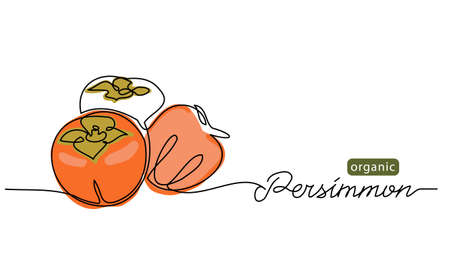 Persimmon fruits sketch vector illustration for label, background. One line drawing art illustration with lettering organic persimmon