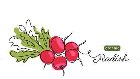 Red radish bundle, bunch. Vector illustration, label, background. One line drawing art illustration with lettering organic radish