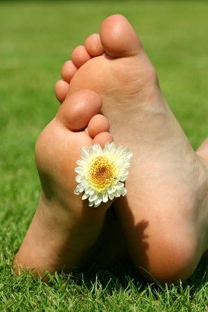 human toe: children s legs lying on the grass, flower decoration
