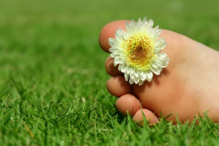 children s legs lying on the grass, flower decoration photo