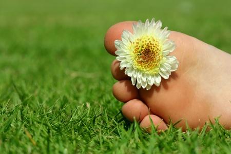 children s: children s legs lying on the grass, flower decoration