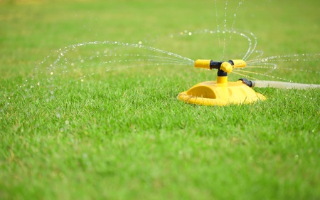 sprinkler: installation of water sprays on green lawn Stock Photo