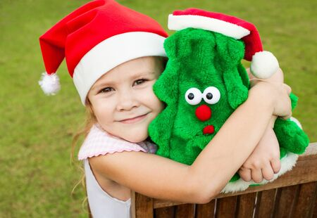 Happy New Year and Merry Christmas Stock Photo - 16825818