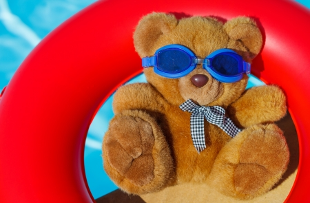 Teddy bear, a stuffed toy bear in the swimming pool photo