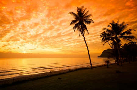 red sunset: Exotic, beautiful and secluded beach with palm trees in the foreground and the sea. Stock Photo