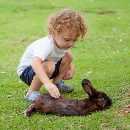 little boy with rabbit photo