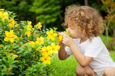 手に花と小さな男の子の肖像画 写真素材
