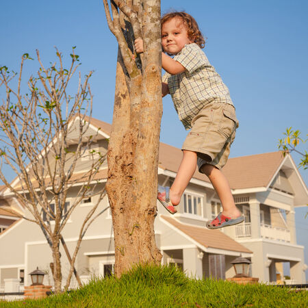 little boy sitting on the tree photo
