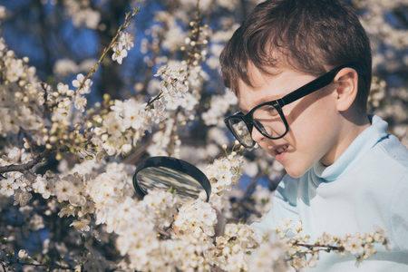 Boy zooming into flowers with a magnifying glass. Stock Photo