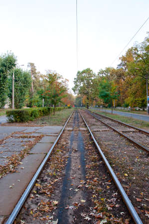 rail track: public transportation empty way of tram rail track outdoor in green autumn deep forest on natural background
