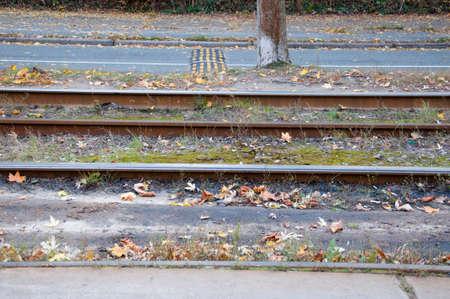 transporte terrestre: transporte público vana manera de ferrocarril de tranvía pista al aire libre de temporada con las hojas de otoño en el suelo sobre fondo natural con nadie Foto de archivo