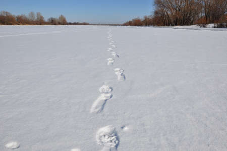 dint: white winter snow with footmark or trace on trail way on santa claus shoes at cold christmas or xmas and new year holiday outdoor