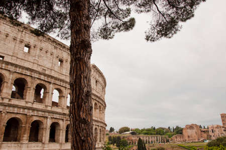 Rome, The Majestic Coliseum. Italy. Copy space Stock Photo