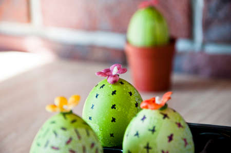 Easter egg. Green life. Flower shop. DIY and handmade. Painted egg. Spring seedlings. Greenhouse. Cactus blooming. Egg hunt. Cooking. Unusual idea. Happy easter. natural dye. Flowers arrangement. Stock Photo