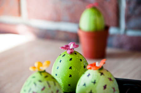 cookery masterpieces. Happy easter. natural dye. Egg hunt. Cooking. Unusual idea. DIY and handmade. Painted egg. Easter egg. Green life. Flower shop. Spring seedlings. Greenhouse. Cactus blooming.