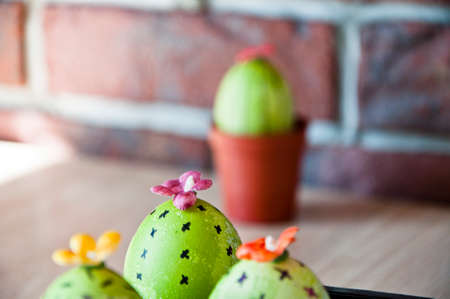 Easter egg. Green life. Flower shop. DIY handmade. Painted egg. Egg hunt. Cooking. Unusual idea. Spring seedlings. Greenhouse. Cactus blooming. Happy easter. natural dye. Think green. Live brightly.