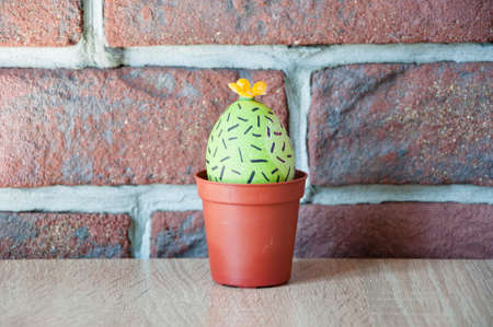 DIY and handmade. Painted egg. Easter egg. Green life. Flower shop. Happy easter. natural dye. Spring seedlings. Greenhouse. Cactus blooming. Egg hunt. Cooking. Unusual idea. Beauty of nature. Stock Photo