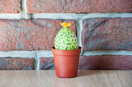 Egg hunt. Cooking. Unusual idea. Happy easter. natural dye. DIY and handmade. Painted egg. Easter egg. Green life. Flower shop. Spring seedlings. Greenhouse. Cactus blooming. Do everything with love.