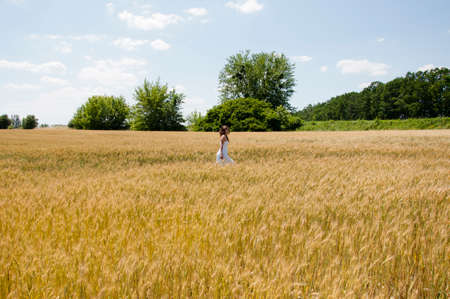 free traveler in field. young woman walking and touch a wheat in cereals field. sexy girl walk in summer sunny day. Beautiful Model girl in white dress running on Spring Field, Sun Light.