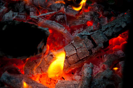 bonfire closeup. fire and firewood turned into coal ash. burning tree branches wooden logs. picnic on camping. warm up the stove. sparking balefire with flames light. Wood campfire. fireplace. Banco de Imagens