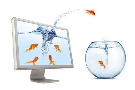 gold fish bowl: A goldfish jumping out of computer monitor to escape to fishbowl (real world) on white background.