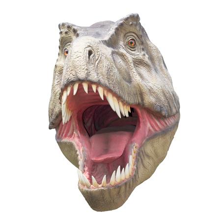Fearsome carnivore dinosaur Tyrannosaurus Rex. Isolated on white