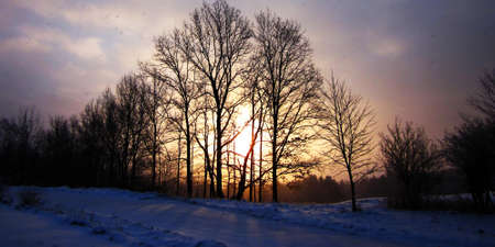 dawns: The next day dawns with the sun shining through the trees, snowfall, and clouds.