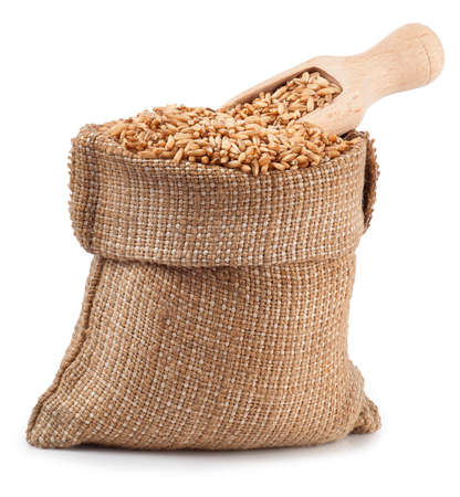 burlap bag: grain oats in burlap bag with wooden scoop isolate on white background