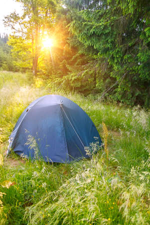 View of tent on meadow in forest at sunrise. C&ing background. C&ing and tent & View Of Tent On Meadow In Forest At Sunrise. Camping Background ...
