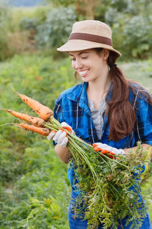 Gardening. Woman with organic carrots in a vegetable garden. Happy girl harvesting carrots in field. Gardener with carrots in garden. Harvest. Young farmer harvesting carrots. Archivio Fotografico