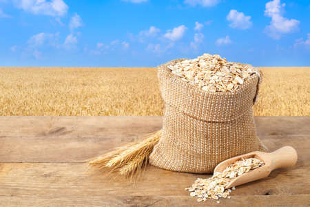 Oat flakes in sack. Ears of oats and oatmeal in bag on table with field on the background. Agriculture and harvest concept. Gold field and blue sky. Uncooked porridge
