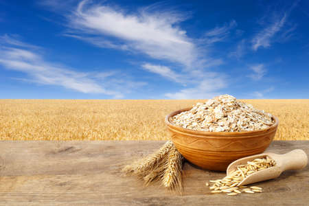 Oat flakes in bowl. Ears of oats and oatmeal in bowl on table with field on the background. Agriculture and harvest concept. Golden field and blue sky with beautiful clouds. Uncooked porridge