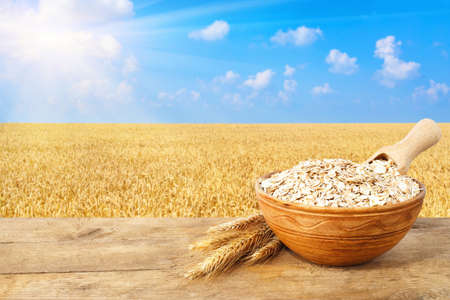 oatmeal: oatmeal in bowl on nature background