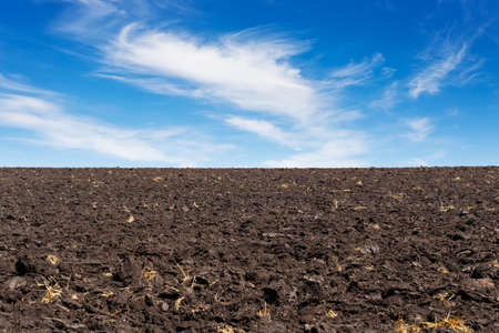 the arable land: black field and blue sky Stock Photo