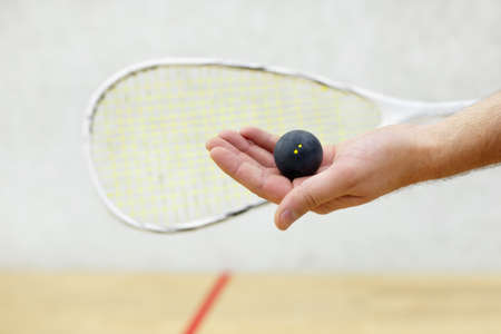 racquetball: Jugador de squash que sirve una pelota Foto de archivo